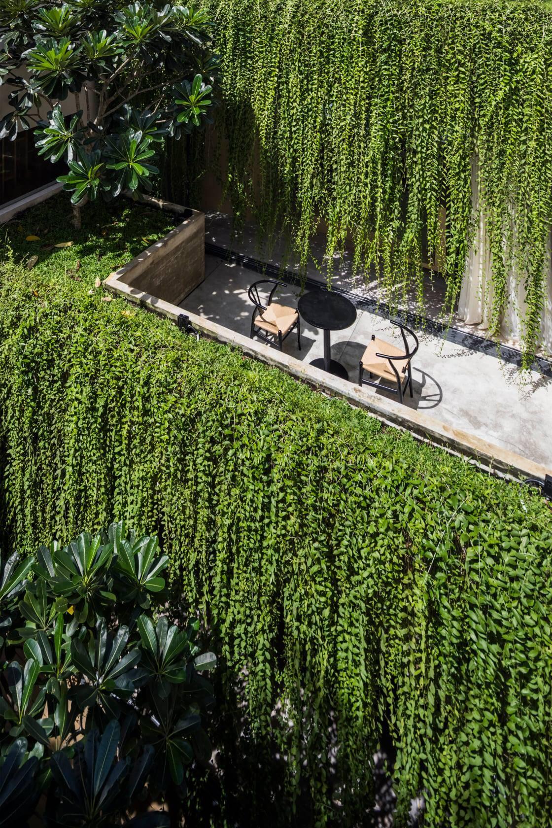 """Không gian thưởng trà và cafe mỗi sáng được """"bao bọc"""" bởi hệ cây xanh dịu mát"""