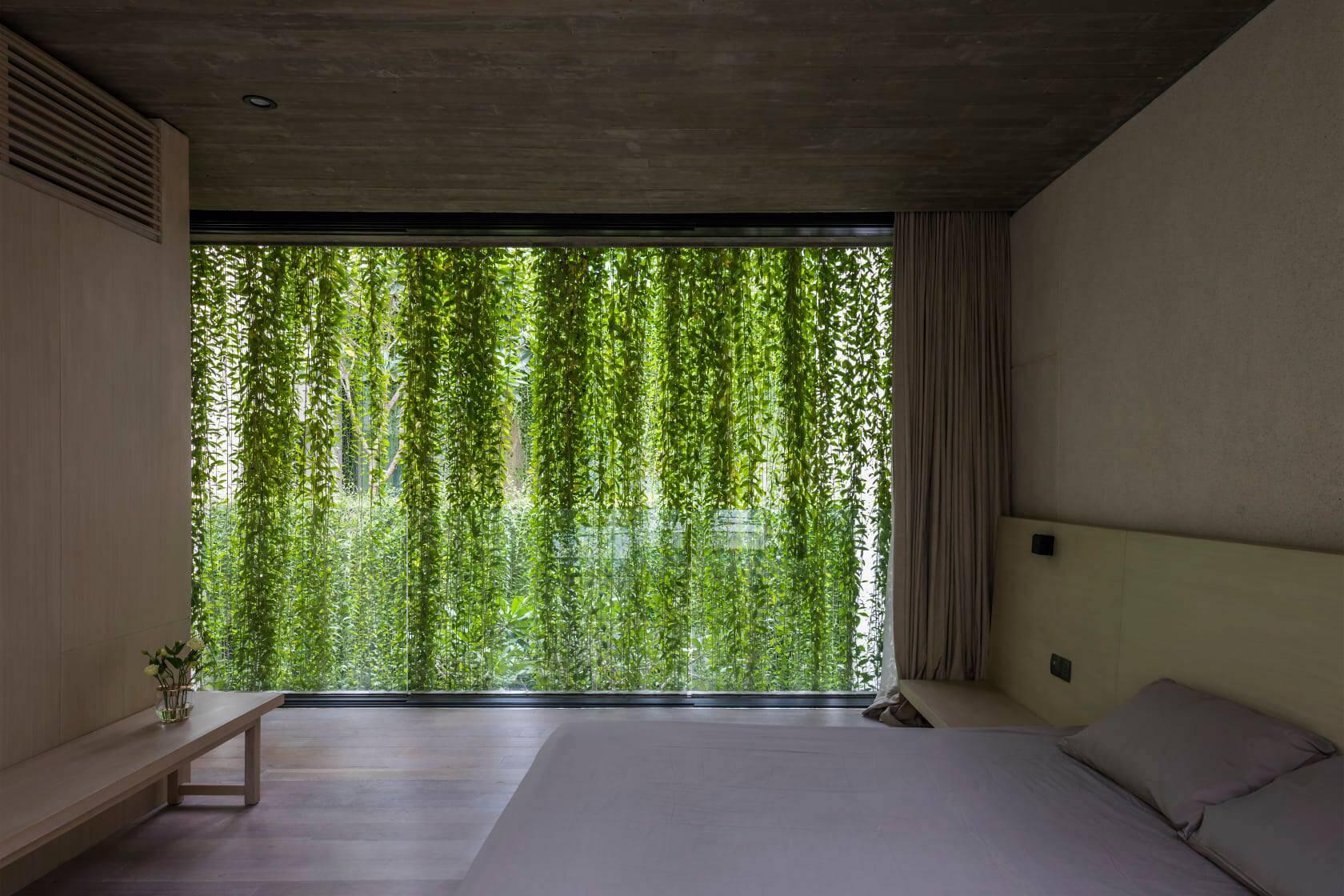 Một phòng ngủ khác có lớp rèm che bằng cây leo gây ấn tượng về thị giác đặc biệt