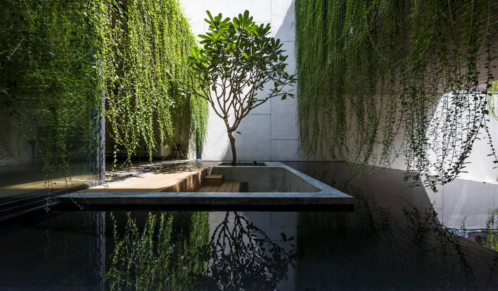 Cây xanh và mặt nước hòa quyện với nhau, mang đến một không gian yên ả, trong lành