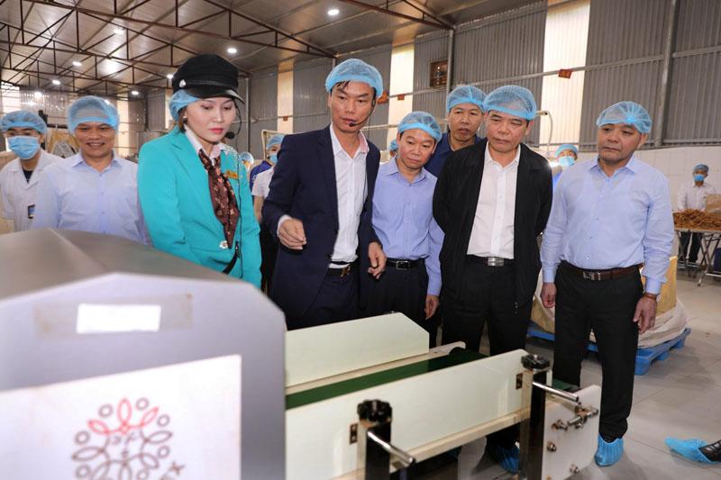 Ông Nguyễn Quế Anh (thứ 4, từ phải qua), Chủ tịch HĐQT Công ty Quế hồi Việt Nam giới thiệu mô hình hợp tác xã liên kết sản xuất - tiêu thụ sản phẩm quế tại huyện Chấn Yên, tỉnh Yên Bái