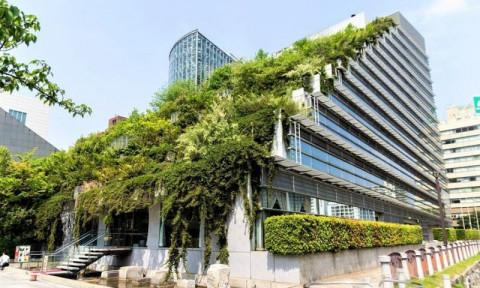 Để thị trường công trình xanh Việt Nam cất cánh?