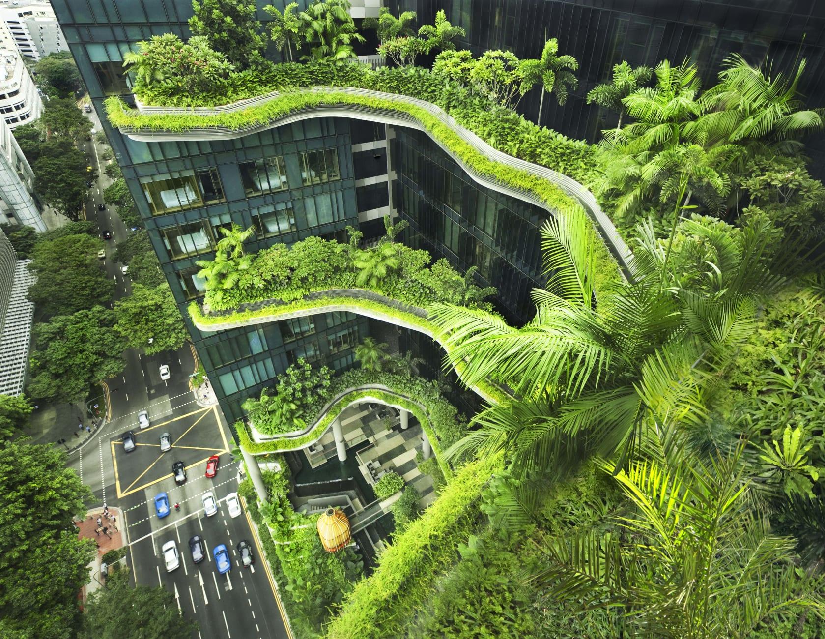 Tòa nhà ParkRoyal on Pickering (Singapore)