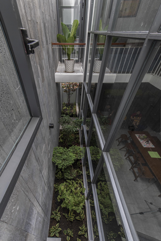 Khu vườn nhỏ thúc đẩy không khí tươi mát cho ngôi nhà