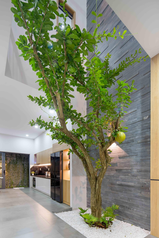 Để giải quyết vấn đề thiếu sáng và bí khí, KTS đã thiết kế một khoảng thông tầng ở giữa nhà