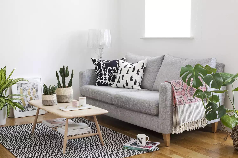 loại bỏ các đặc điểm trang trí như bức tường phòng trưng bày để chuyển sang trồng cây trong nhà nhỏ
