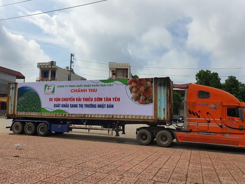 Lô vải đầu tiên của mùa vụ 2021 gồm 20 tấn vải thiều sớm của huyện Tân Yên (Bắc Giang) vừa được thu mua, xuất khẩu sang thị trường Nhật Bản