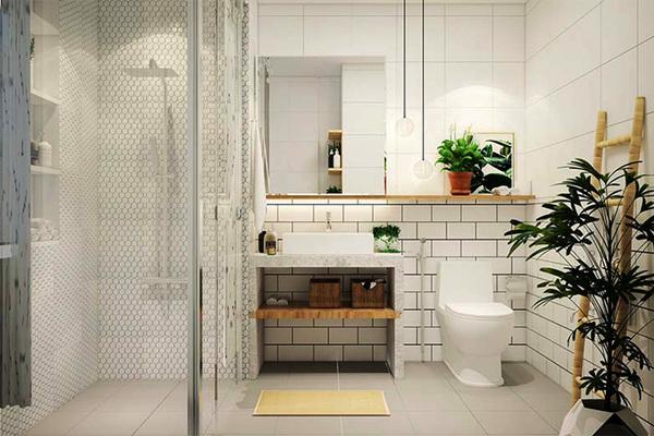 Có thể ốp gạch tường nhà vệ sinh cao gần sát trần. (Ảnh minh hoạ)