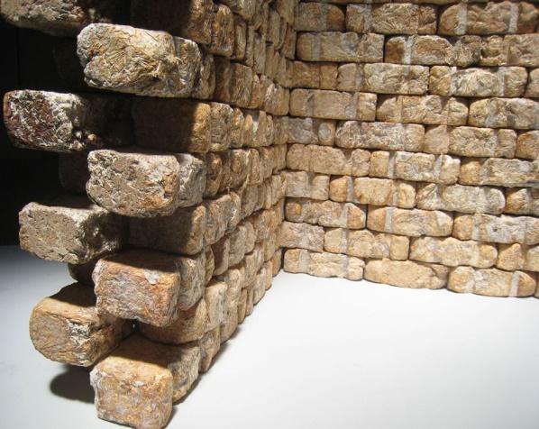 Gạch nấm – vật liệu xây dựng hữu ích trong tương lai