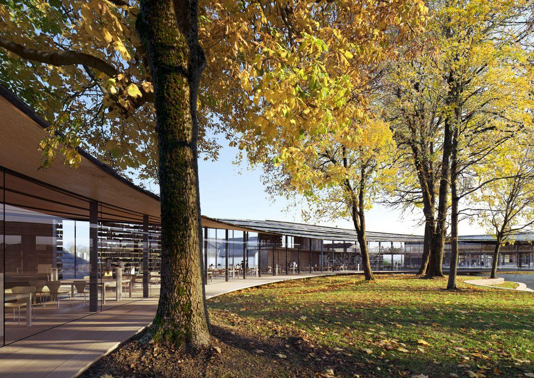 Hình dạng cong của tòa nhà sẽ được chạy xung quanh những cây hiện có, trong khi một giảng đường ngoài trời mới và nhiều điểm truy cập sẽ giúp kết nối tòa nhà với công viên.