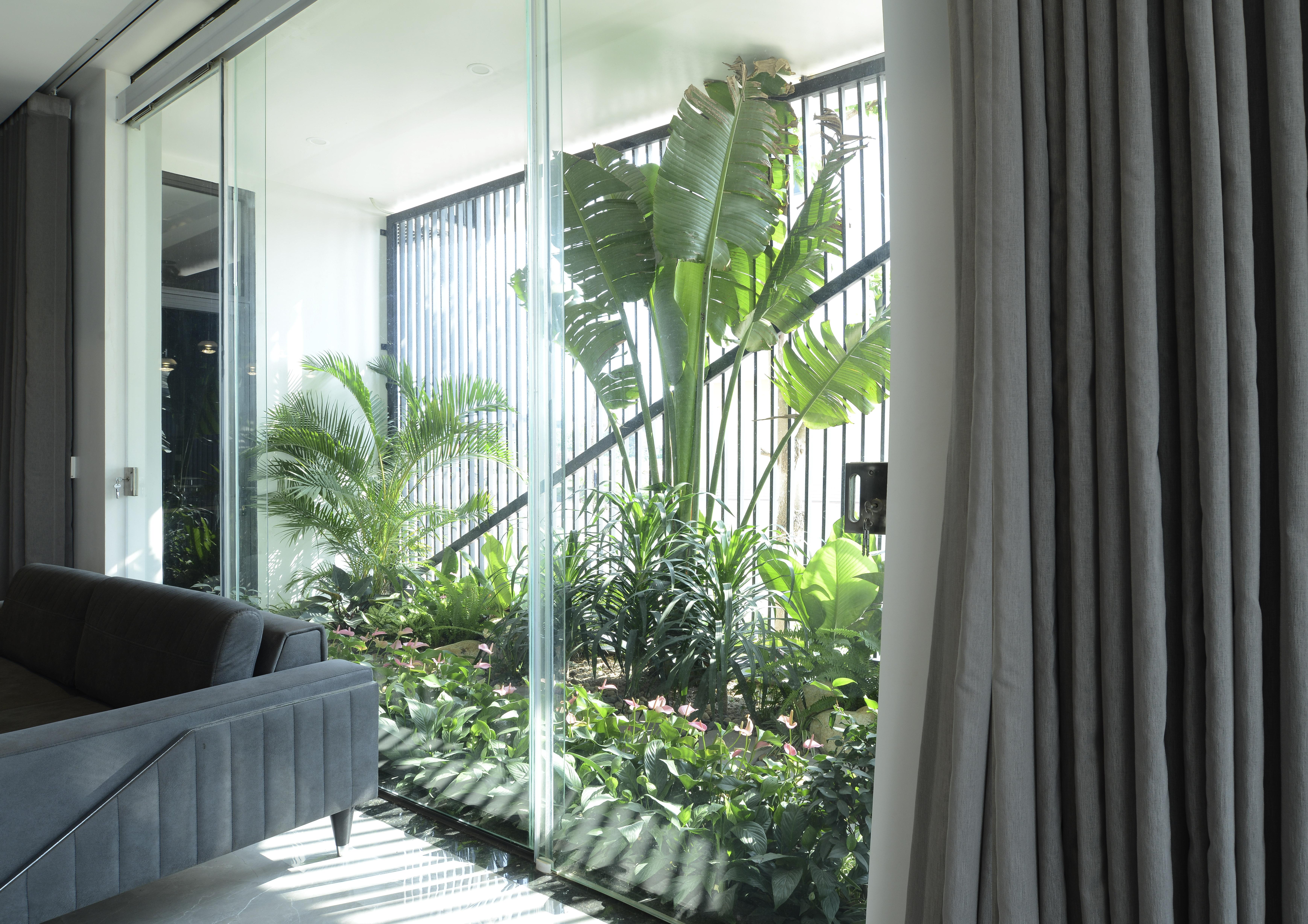 Không gian cây xanh - góc nhìn từ phòng khách