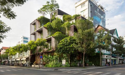 Tony Fruit Office – Khối xanh khuyết giữa đô thị