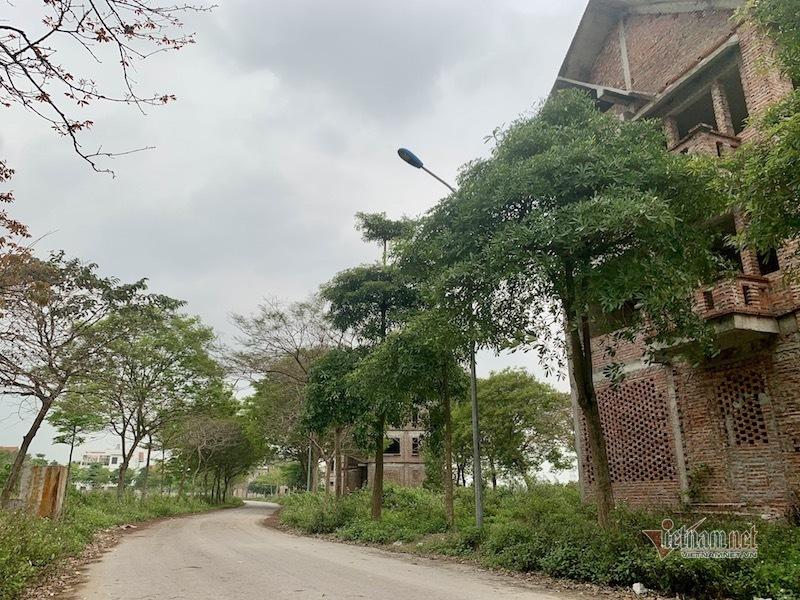 Nhiều căn biệt thự bỏ hoang ở khu đô thị Hà Phong (Mê Linh, Hà Nội)