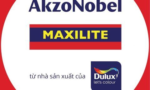 Maxilite và những điều thú vị ít người biết
