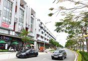 """Diễn biến """"ngược sóng"""" của phân khúc nhà phố, biệt thự Hà Nội và TPHCM"""